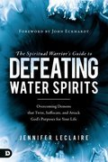 Cover image for Spiritual Warrior's Guide to Defeating Water Spirits