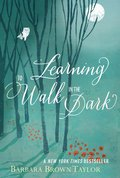 Cover image for Learning to Walk in the Dark