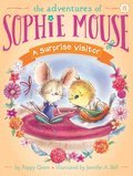 Cover image for Surprise Visitor
