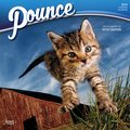 Cover image for 2018 Pounce Square Calendar