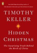 Cover image for Hidden Christmas