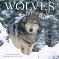 Cover image for 2018 Wolves - Wyman Square Calendar
