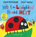 Cover image for What the Ladybird Heard Next